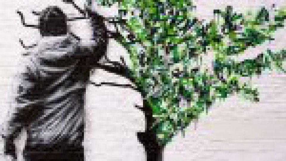 L'Association ALHPI recrute un ergothérapeute au sein de son Service Rétablissement (SAMSAH)